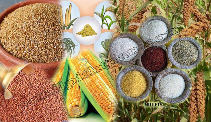 Millet Benefits in Tamil